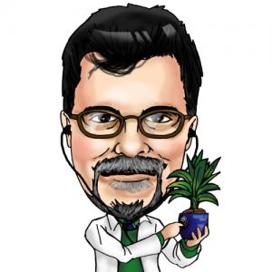 Dr. John's Lawn Prescription